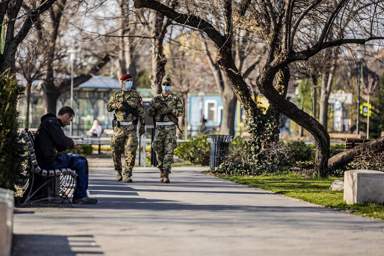 Дополнительные силы армии могут быть задействованы в защите от вируса короны